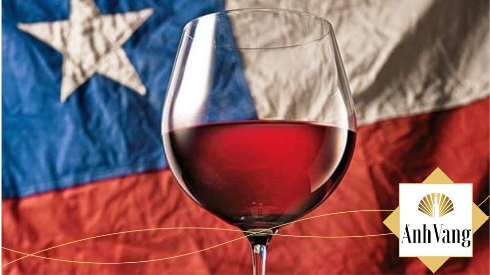 Sự độc đáo của Rượu vang Chile nhập khẩu